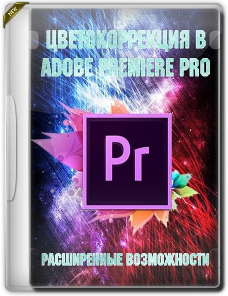 Цветокоррекция в Adobe Premiere PRO. Расширенные возможности (2019) HDRip