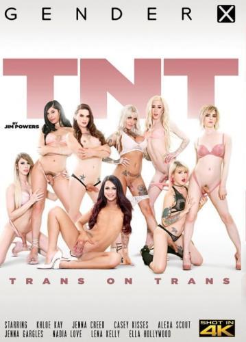 TNT Trans on Trans (FullHD/6.74 GB)