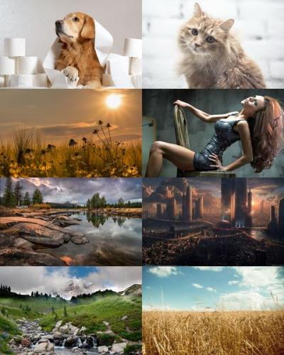 Wallpapers Mix №872
